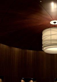 Ceiling Sapele light