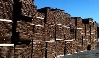 stacks of Sapele wood